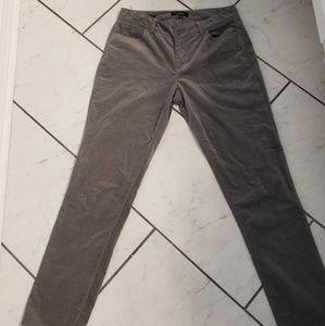 Talbots signature gray velvety soft pants. Size 8